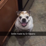 Smile by Dr. Fasano